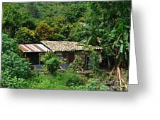 In The Jungle House Greeting Card