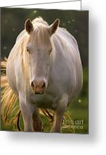 In The Land Of  Unicorns Greeting Card