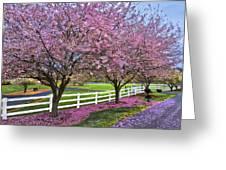 In The Pink Greeting Card by Debra and Dave Vanderlaan