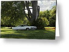 In The Shade Greeting Card