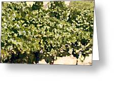 In The Vineyard Greeting Card by Artist and Photographer Laura Wrede