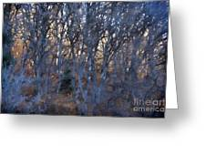 In The Woods V2 Greeting Card