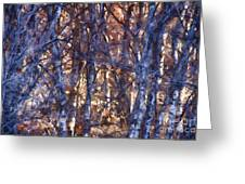 In The Woods V5 Greeting Card