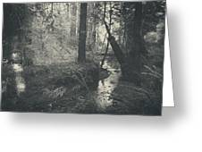 In This Silence Greeting Card by Laurie Search