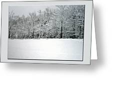 In Winter's Light Greeting Card