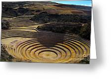Inca Crop Circles At Moray Greeting Card