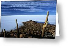 Incahuasi Island And Salar De Uyuni Greeting Card