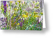 Incandescent Daisies Greeting Card