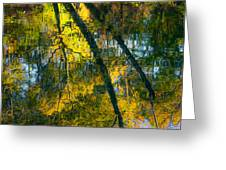 Incredible Colors Greeting Card by Parker Cunningham