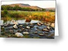 Independence Creek Preserve 2am-106000 Greeting Card