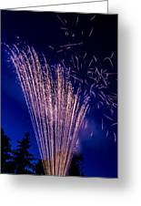 Independence Day 2014 17 Greeting Card by Alan Marlowe