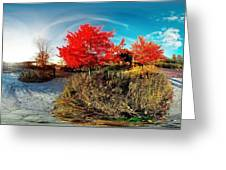 Independence Grove Forest Preserve I Greeting Card