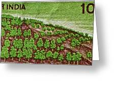 India 10.00 Stamp Greeting Card
