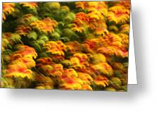 Indian Blanket Psychedelic Greeting Card