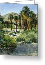 Indian Canyon Palms Greeting Card