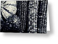 Indian Corn And Squash In Black And White Greeting Card