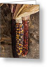 Indian Harvest Corn Greeting Card