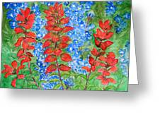 Indian Paintbrush And Bluebonnets Greeting Card