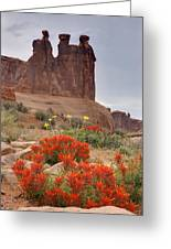 Indian Paintbrush And The Three Gossips Greeting Card