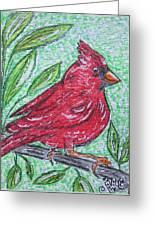 Indiana Cardinal Redbird Greeting Card