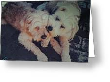 Indie And Cea Mother Son  Greeting Card