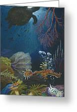Indigenous Aquatic Creatures Of New Guinea Greeting Card by Beth Dennis