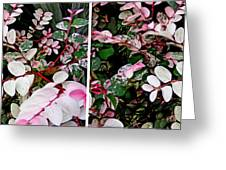 Indigo Plant In Stereo Greeting Card