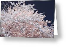 Inferred Spring Greeting Card
