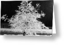 Infrared Ice Tree Greeting Card