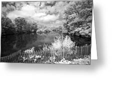 Infrared Mill Pond Greeting Card
