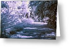 Infrared Morning Greeting Card