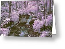Infrared Mountain Stream Greeting Card