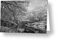Infrared River Greeting Card
