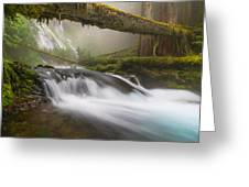 Infusion Greeting Card