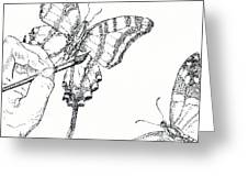 Inked Swallowtail Greeting Card