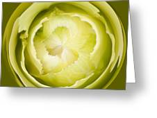 Inner Cabbage Orb Greeting Card