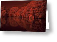 Inner City Lake Greeting Card
