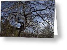 Inner Energy In Full Blossom 1 Greeting Card