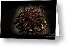 Inner Pine Cone Greeting Card