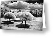 Innisfree Garden Greeting Card