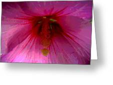 Inside A Rose Of Sharon Greeting Card