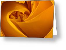 Inside A Yellow Rose Greeting Card