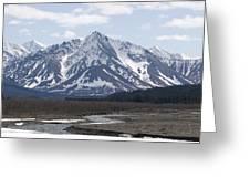 Inside Denali National Park 4 Greeting Card
