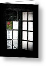Inside Looking Out Greeting Card by Bobbi Feasel