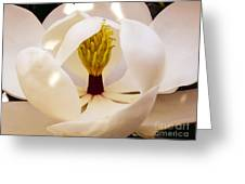 Inside The Magnolia Greeting Card