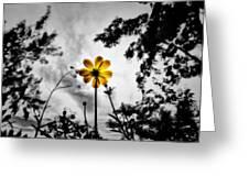 Inspire Greeting Card by Suradej Chuephanich
