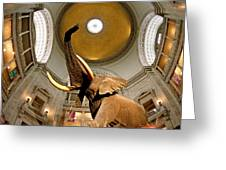 Interiors Of A Museum, National Museum Greeting Card