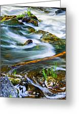 Intimate With River Greeting Card
