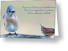 Intimidation Greeting Card by Bonnie Barry
