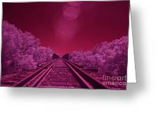 Into The Darkness Of Light Greeting Card